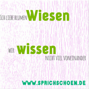 Regeln deutsche Aussprache Phonetik aussprechen Sprachtraining Sprechtraining Berlin schön sprechen deutsch lernen gut Phonetiktraining Aussprachetrainin